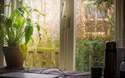 How to secure your garden office