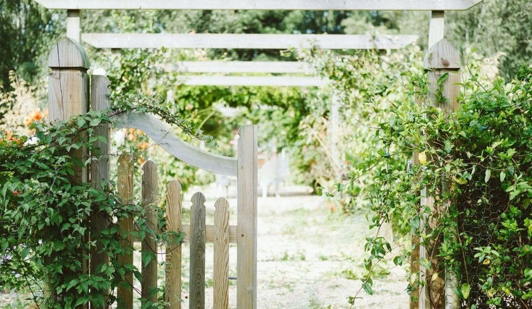 How to secure your garden this summer