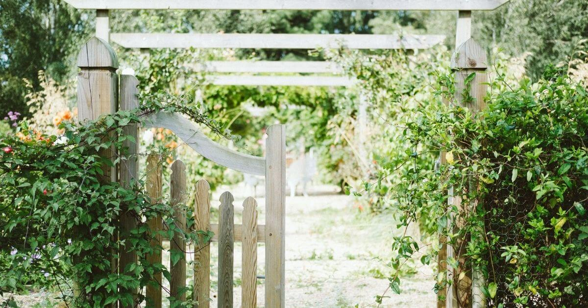 garden gate with bushes around it